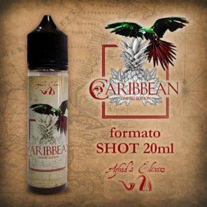 Aroma Concentrato Caribbean Limited Edition 20ml Grande Formato - Azhad's